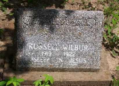 WILBUR, RUSSELL - Baxter County, Arkansas   RUSSELL WILBUR - Arkansas Gravestone Photos