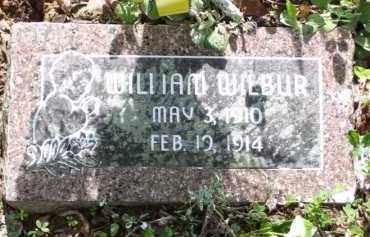 WILBUR, WILLIAM M. - Baxter County, Arkansas   WILLIAM M. WILBUR - Arkansas Gravestone Photos