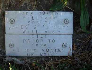 WILLIAMS, JOE DAVID - Baxter County, Arkansas   JOE DAVID WILLIAMS - Arkansas Gravestone Photos