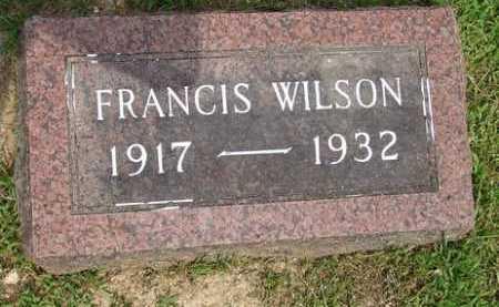 WILSON, FRANCIS - Baxter County, Arkansas | FRANCIS WILSON - Arkansas Gravestone Photos