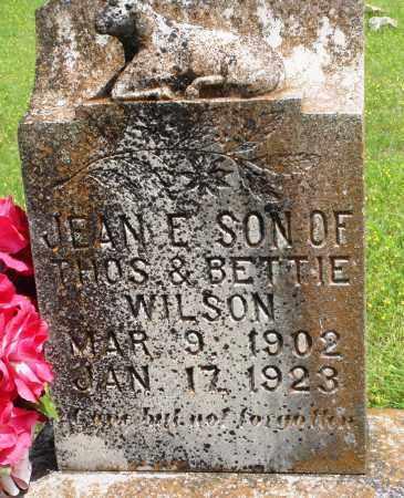 WILSON, JEAN E - Baxter County, Arkansas | JEAN E WILSON - Arkansas Gravestone Photos