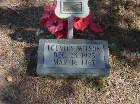 FREEMAN WILSON (2), LOUVICY - Baxter County, Arkansas   LOUVICY FREEMAN WILSON (2) - Arkansas Gravestone Photos
