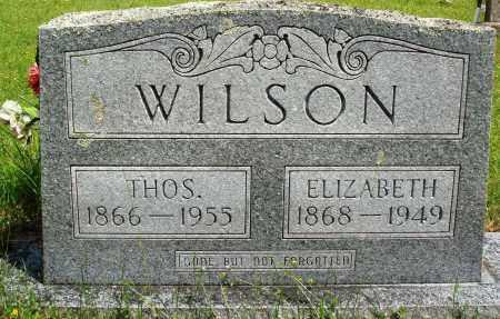 WILSON, ELIZABETH - Baxter County, Arkansas | ELIZABETH WILSON - Arkansas Gravestone Photos