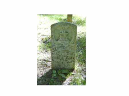 WOLF (VETERAN CSA), AZARIAH T - Baxter County, Arkansas   AZARIAH T WOLF (VETERAN CSA) - Arkansas Gravestone Photos