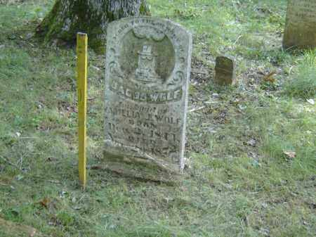 WOLF, JACOB - Baxter County, Arkansas   JACOB WOLF - Arkansas Gravestone Photos