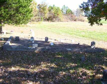 """YEARRY, FRANCES LUCINDA """"FANNY"""" - Baxter County, Arkansas 