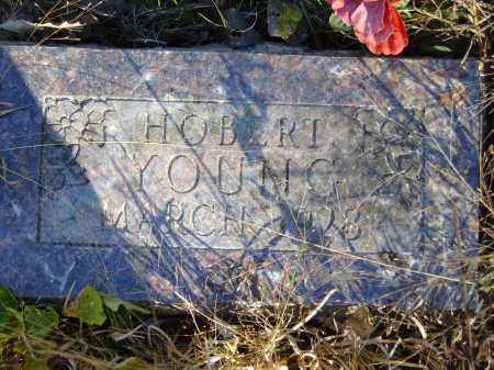 YOUNG, HOBERT - Baxter County, Arkansas | HOBERT YOUNG - Arkansas Gravestone Photos
