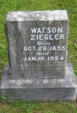ZIEGLER, WATSON - Baxter County, Arkansas | WATSON ZIEGLER - Arkansas Gravestone Photos