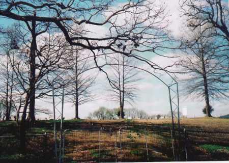 *YELL CEMETERY GATE,  - Benton County, Arkansas |  *YELL CEMETERY GATE - Arkansas Gravestone Photos