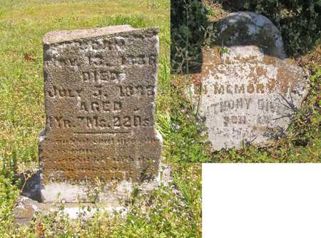 HALL, ANTHONY - Benton County, Arkansas   ANTHONY HALL - Arkansas Gravestone Photos