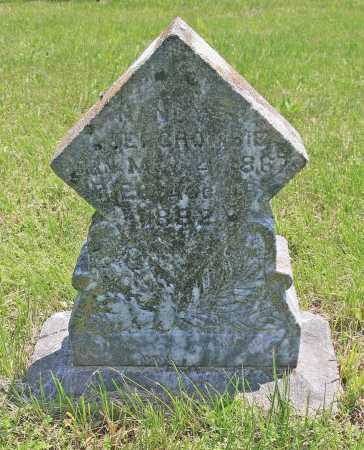 ABERCROMBIE, NANCY S - Benton County, Arkansas | NANCY S ABERCROMBIE - Arkansas Gravestone Photos