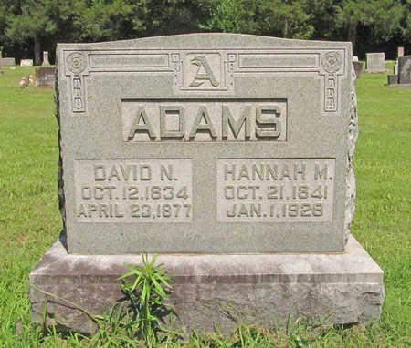ADAMS, DAVID N - Benton County, Arkansas   DAVID N ADAMS - Arkansas Gravestone Photos