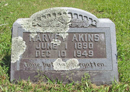 AKINS, HARVEY - Benton County, Arkansas | HARVEY AKINS - Arkansas Gravestone Photos