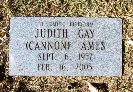 CANNON AMES, JUDITH GAY - Benton County, Arkansas   JUDITH GAY CANNON AMES - Arkansas Gravestone Photos