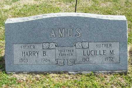 AMOS, LUCILLE M. - Benton County, Arkansas   LUCILLE M. AMOS - Arkansas Gravestone Photos