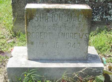 ANDREWS, SHARON MAE - Benton County, Arkansas | SHARON MAE ANDREWS - Arkansas Gravestone Photos