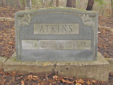 ATKINS, ALICE - Benton County, Arkansas | ALICE ATKINS - Arkansas Gravestone Photos