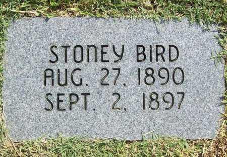 BIRD, STONEY (REPLACEMENT) - Benton County, Arkansas | STONEY (REPLACEMENT) BIRD - Arkansas Gravestone Photos