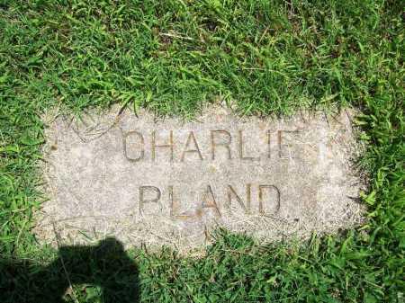 BLAND, CHARLIE - Benton County, Arkansas   CHARLIE BLAND - Arkansas Gravestone Photos