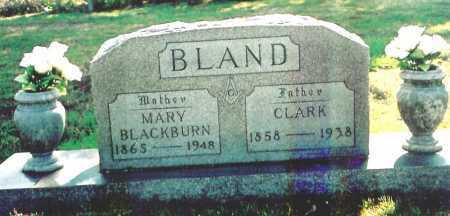 BLAND, GEORGE CLARK - Benton County, Arkansas   GEORGE CLARK BLAND - Arkansas Gravestone Photos