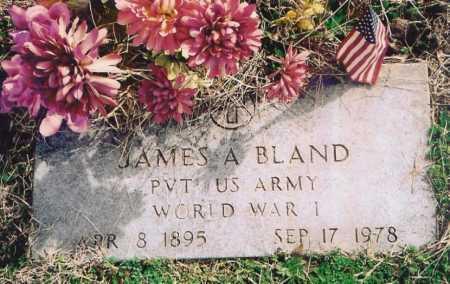 BLAND, JAMES ALONZO - Benton County, Arkansas | JAMES ALONZO BLAND - Arkansas Gravestone Photos