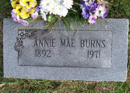 BURNS, ANNIE MAE - Benton County, Arkansas | ANNIE MAE BURNS - Arkansas Gravestone Photos