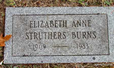 BURNS, ELIZABETH ANNE - Benton County, Arkansas | ELIZABETH ANNE BURNS - Arkansas Gravestone Photos