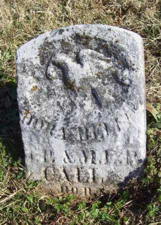 CALL, DORA BELLE - Benton County, Arkansas | DORA BELLE CALL - Arkansas Gravestone Photos