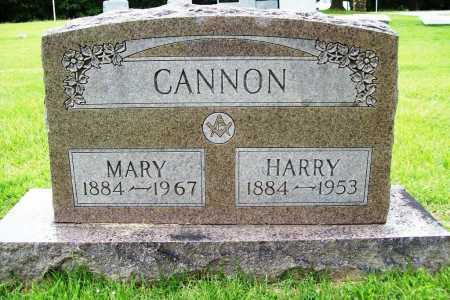 CANNON, HARRY - Benton County, Arkansas | HARRY CANNON - Arkansas Gravestone Photos