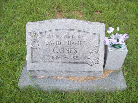 "CARNES, DAVID ""HAMP"" - Benton County, Arkansas 
