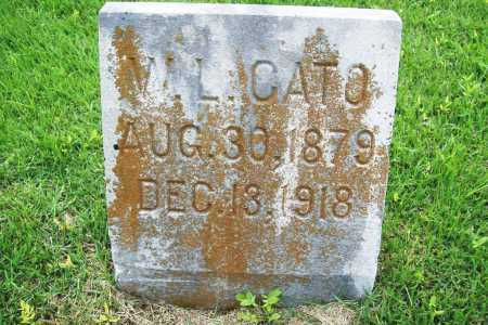 CATO, W. L. - Benton County, Arkansas | W. L. CATO - Arkansas Gravestone Photos