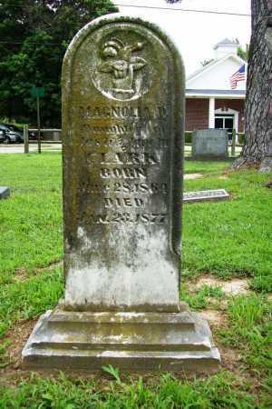 CLARK, MAGNOLIA D. - Benton County, Arkansas | MAGNOLIA D. CLARK - Arkansas Gravestone Photos