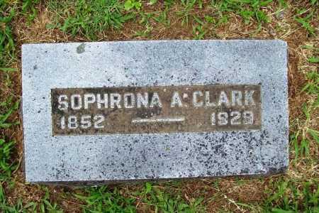 CLARK, SOPHRONA AVELINE - Benton County, Arkansas | SOPHRONA AVELINE CLARK - Arkansas Gravestone Photos