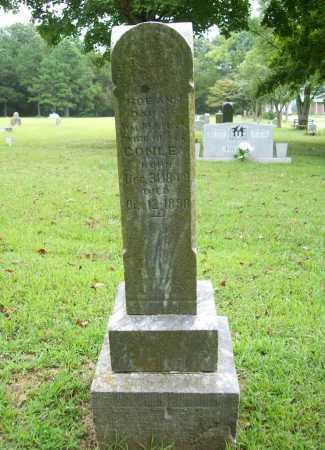 CONLEY, ROE ANN - Benton County, Arkansas | ROE ANN CONLEY - Arkansas Gravestone Photos