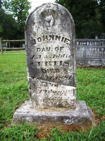 CURTIS, JOHNNIE - Benton County, Arkansas | JOHNNIE CURTIS - Arkansas Gravestone Photos
