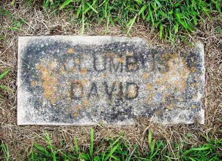DAVID, COLUMBUS - Benton County, Arkansas | COLUMBUS DAVID - Arkansas Gravestone Photos