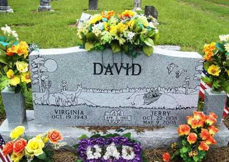 DAVID, JERRY LLOYD SR. - Benton County, Arkansas | JERRY LLOYD SR. DAVID - Arkansas Gravestone Photos