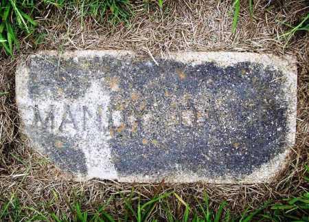 DAVID, MANDY - Benton County, Arkansas   MANDY DAVID - Arkansas Gravestone Photos
