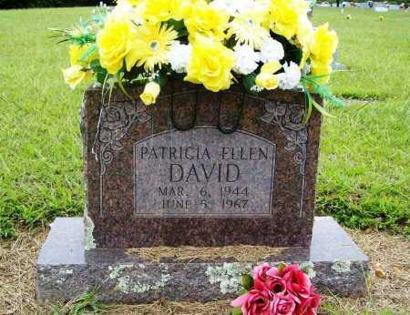 DAVID, PATRICIA ELLEN - Benton County, Arkansas | PATRICIA ELLEN DAVID - Arkansas Gravestone Photos