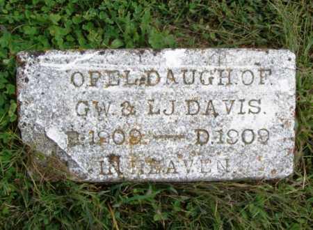 DAVIS, OPEL - Benton County, Arkansas | OPEL DAVIS - Arkansas Gravestone Photos