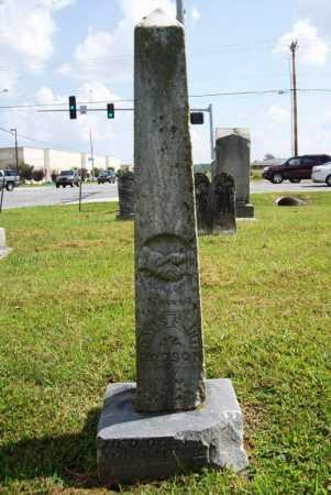 DODSON, DAVIS FLINT - Benton County, Arkansas | DAVIS FLINT DODSON - Arkansas Gravestone Photos