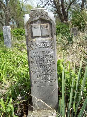 FIELDS, MAHALA - Benton County, Arkansas | MAHALA FIELDS - Arkansas Gravestone Photos