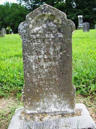 FINE, PETER G. - Benton County, Arkansas | PETER G. FINE - Arkansas Gravestone Photos