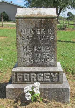 ROLLER FORGEY, MAHALA - Benton County, Arkansas | MAHALA ROLLER FORGEY - Arkansas Gravestone Photos
