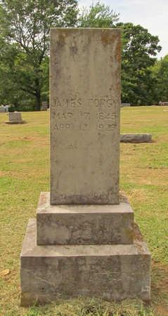 FORGY, JAMES - Benton County, Arkansas   JAMES FORGY - Arkansas Gravestone Photos