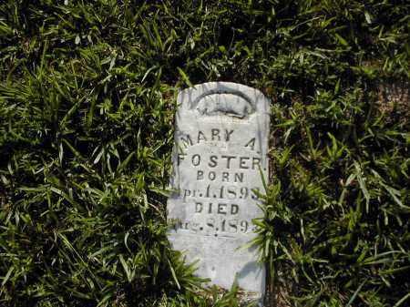 FOSTER, MARY A. - Benton County, Arkansas | MARY A. FOSTER - Arkansas Gravestone Photos