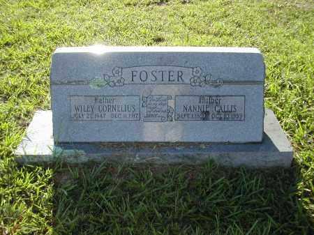 FOSTER, NANNIE CALLIS - Benton County, Arkansas   NANNIE CALLIS FOSTER - Arkansas Gravestone Photos