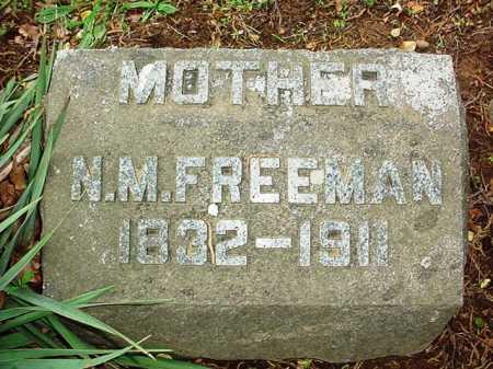 FREEMAN, N. M. - Benton County, Arkansas | N. M. FREEMAN - Arkansas Gravestone Photos