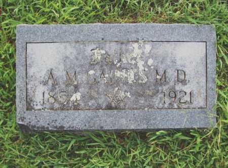 GAINES, ADELBERT M MD - Benton County, Arkansas | ADELBERT M MD GAINES - Arkansas Gravestone Photos