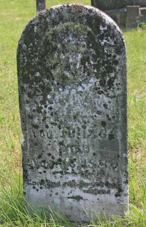 GIVENS, ELIZABETH - Benton County, Arkansas | ELIZABETH GIVENS - Arkansas Gravestone Photos